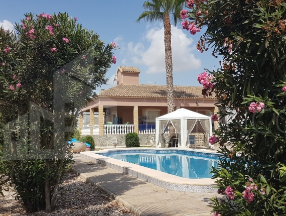 Villa - Holidays let - Catral - Catral